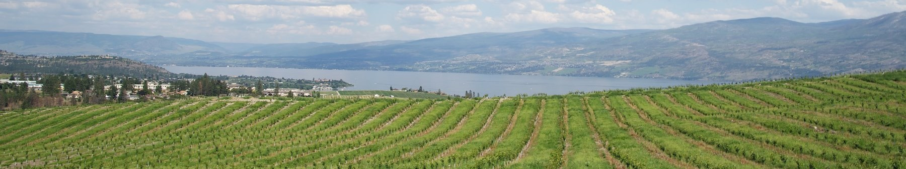 West Kelowna View from Glen Canyon D-Hull Image