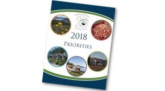 Council's 2018 Priorities