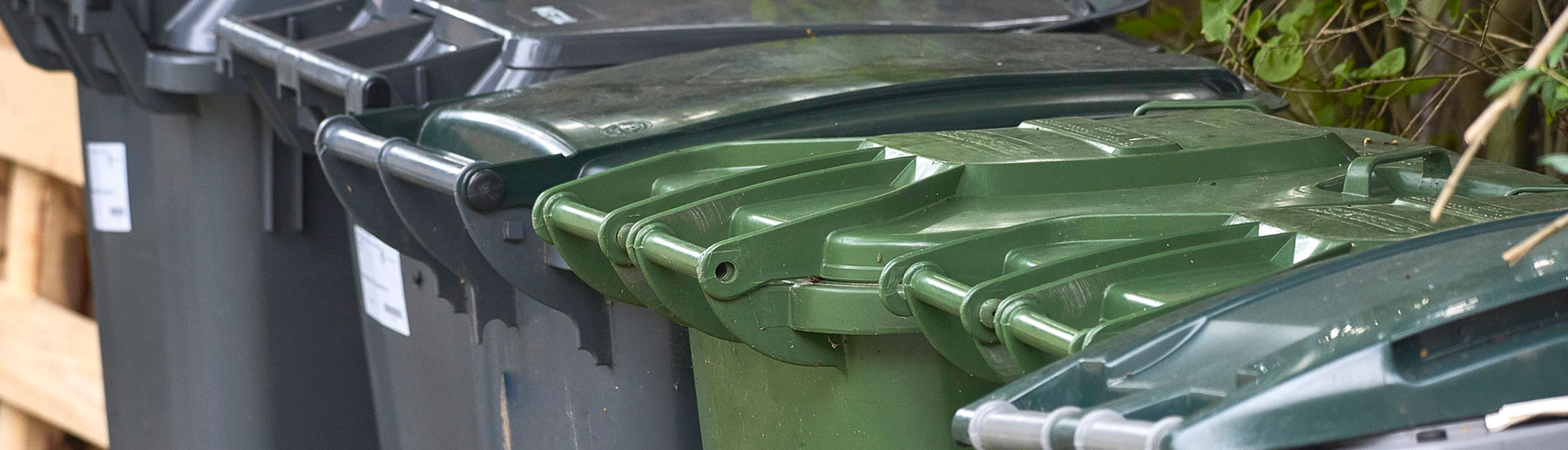 green garbage bins in a row
